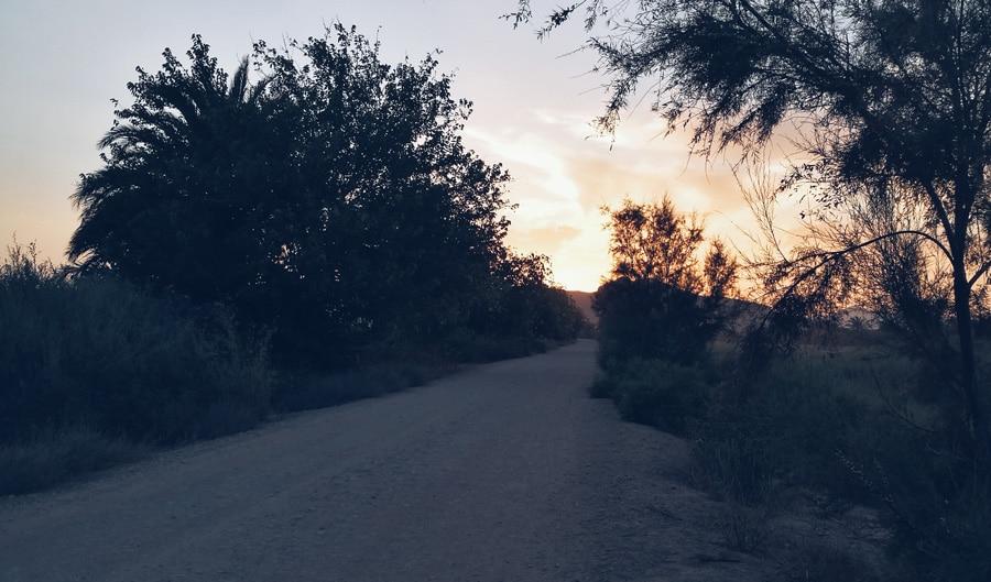 camino Zona de confort salir