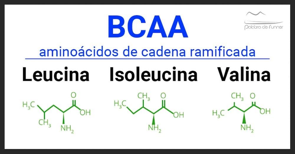 BCAA aminoacidos de cadena ramificada