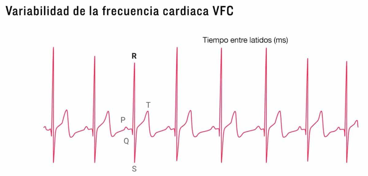 variabilidad de la frecuencia cardiaca hrv